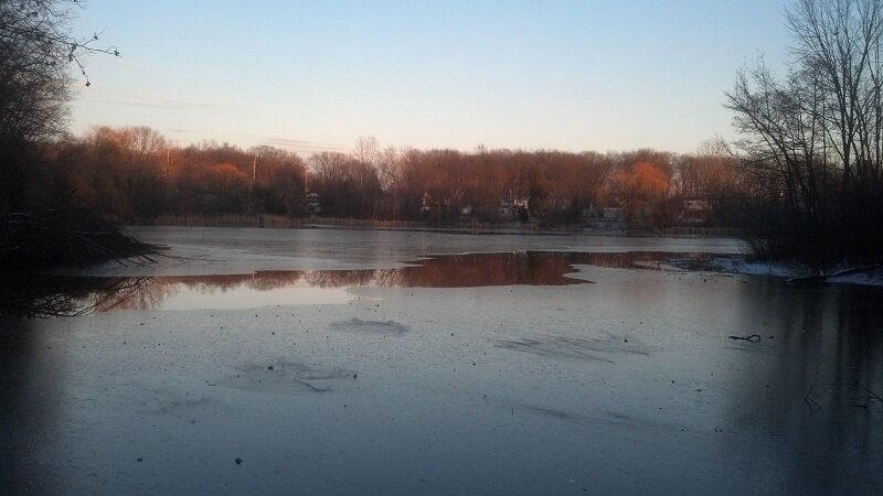 Early ice on Thurston Pond, December 2012